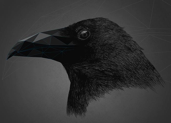 kaan bağcı-black cyrstal