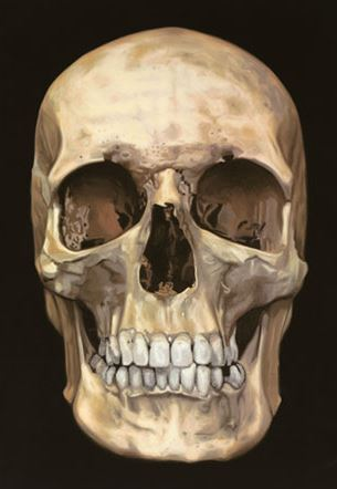 Damien Hirst - The Skull Beneath the Skin